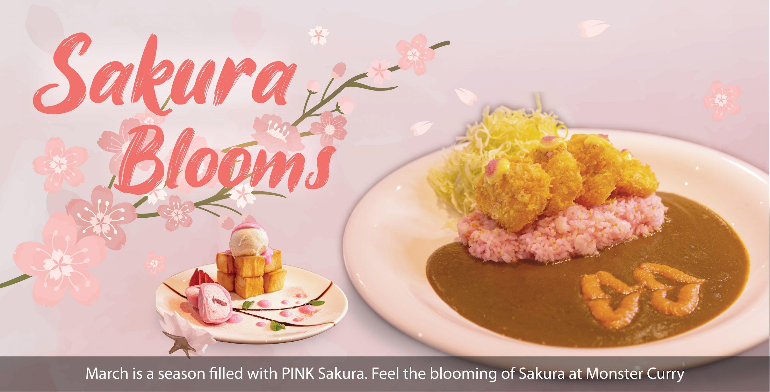 Sakura Blooms at Monster Curry